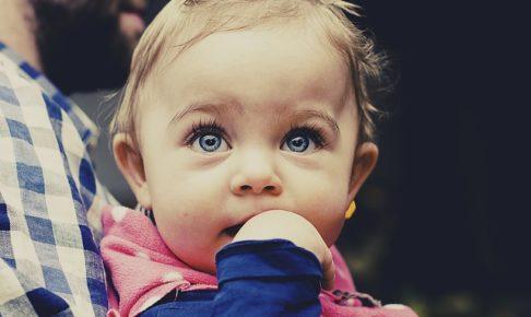 1歳児2歳児におすすめ絵本ランキング