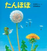 4歳~オススメ科学絵本たんぽぽ
