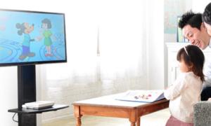 ディズニー英語システム(DWE)教材パッケージ ストレートプレイDVD