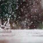 【おすすめ科学絵本】水のこと, 雨のことが楽しく読める絵本《3~6歳児》