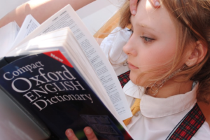 【タブレット教材】中学受験を考えたら「とりあえずRISU算数」の理由と効果