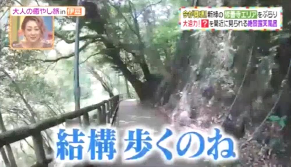 【子どもにおすすめ】滝に洞窟にプール! ヒルナンデス紹介「天城荘」の露天風呂と周辺スポット