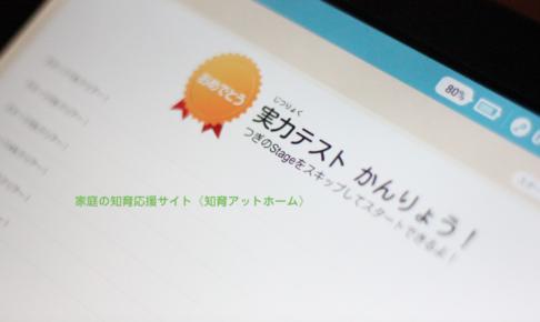 【RISU算数】RISUに申し込もう! と思ったら読んでほしい料金を決める大切な実力テストの話