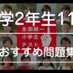 【全国統一小学生テスト11月対策】家庭学習で偏差値70! おすすめ問題集&ドリル(2年生11月)